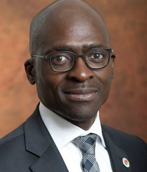 Finance Minister receives SAA's CEO submission
