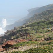 Wild Coast Survivor show benefits area  by over R10 million
