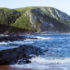 Discover Eastern Cape province's Big 7