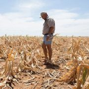 Drought a threat to Western Cape growth