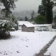 Snow-spotter bonanza in Eastern Cape